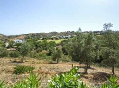 R3893908-property-image-1