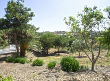 R3893947-property-image-2