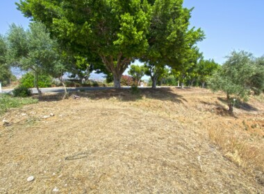 R3895927-property-image-2