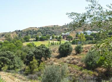 R3893878-property-image